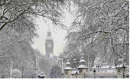 Snow covers tree branches in front of the Houses of Parliament in central London in February 2009. Photograph: Toby Melville/Reuters