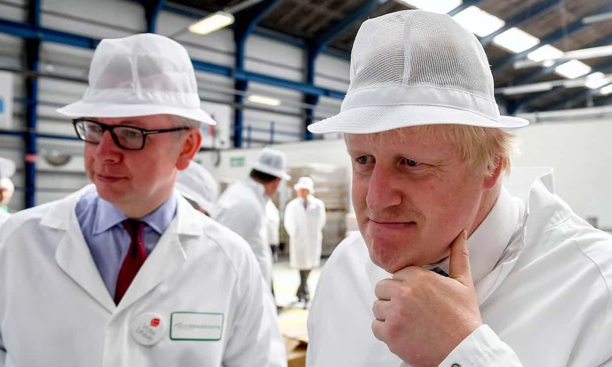 Michael Gove and Boris Johnson campaigning for Vote Leave in June 2016. Photograph: Pool/Getty Images